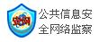 公共信息网络安全监察